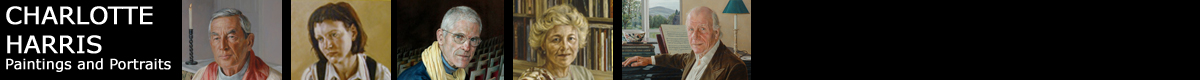 Banner image from various portrait commissions